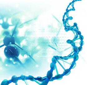 DNA DIET